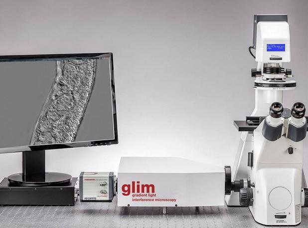 KOSTER & PHIOPTICS厚组织光干涉显微镜