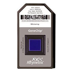 Affymetrix表达谱芯片