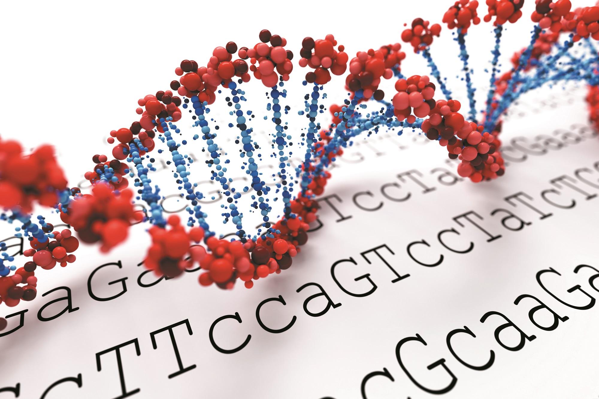 染色质免疫共沉淀ChIP-qPCR服务