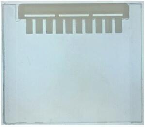 试用装-GLASS Gel® 预制胶 Hepes-tris gel