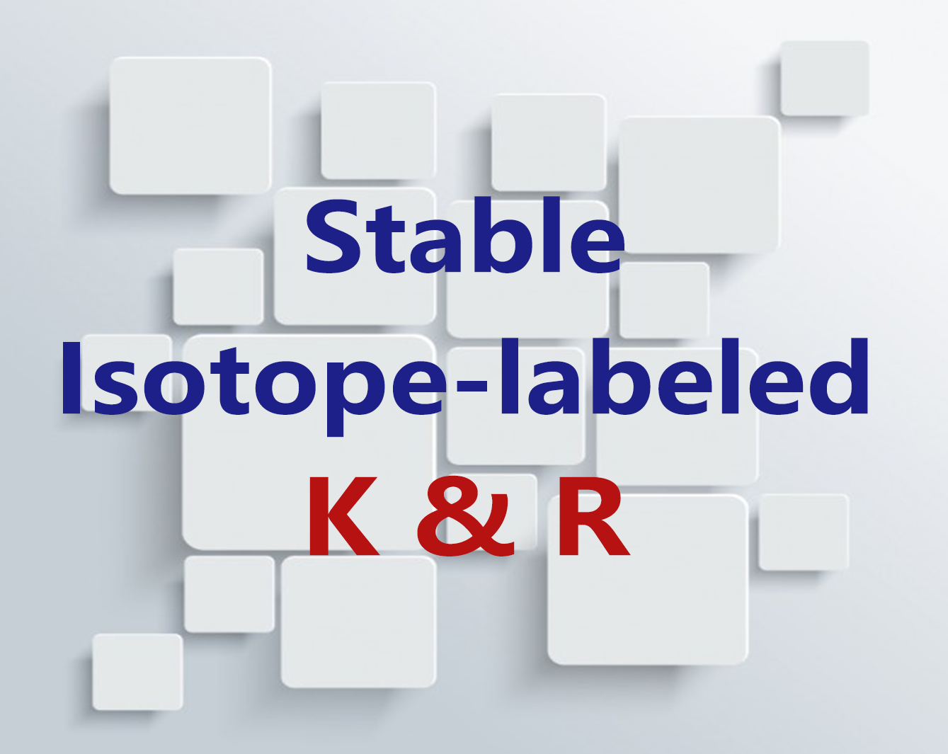 Stable Isotope-labeled K and R