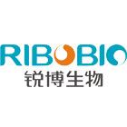 RiboArray芯片质量测试