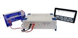 Pippin Pulse 脉冲场电泳系统