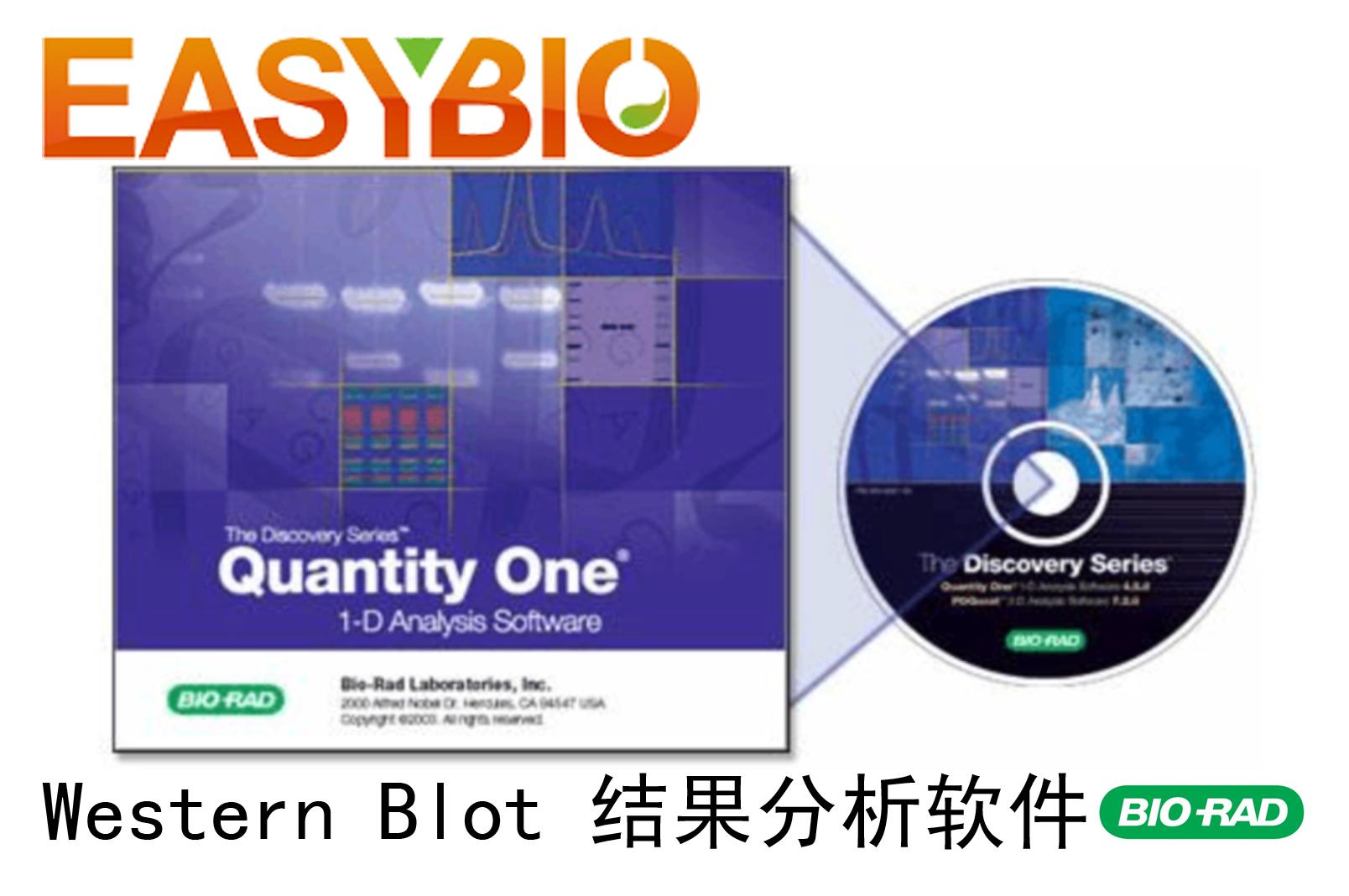 Quantity One 4.62 送教程