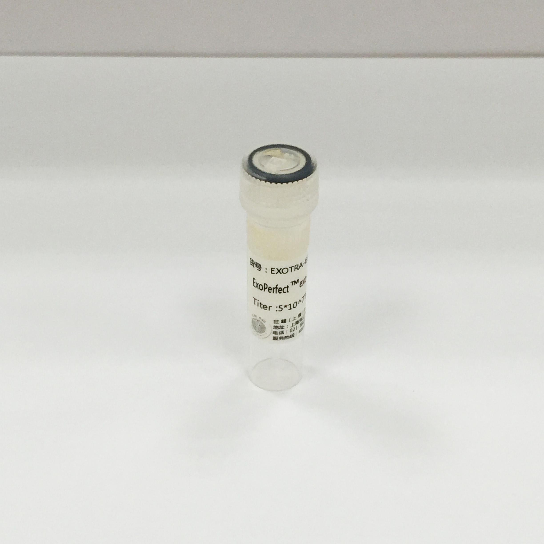 Exosome示踪慢病毒
