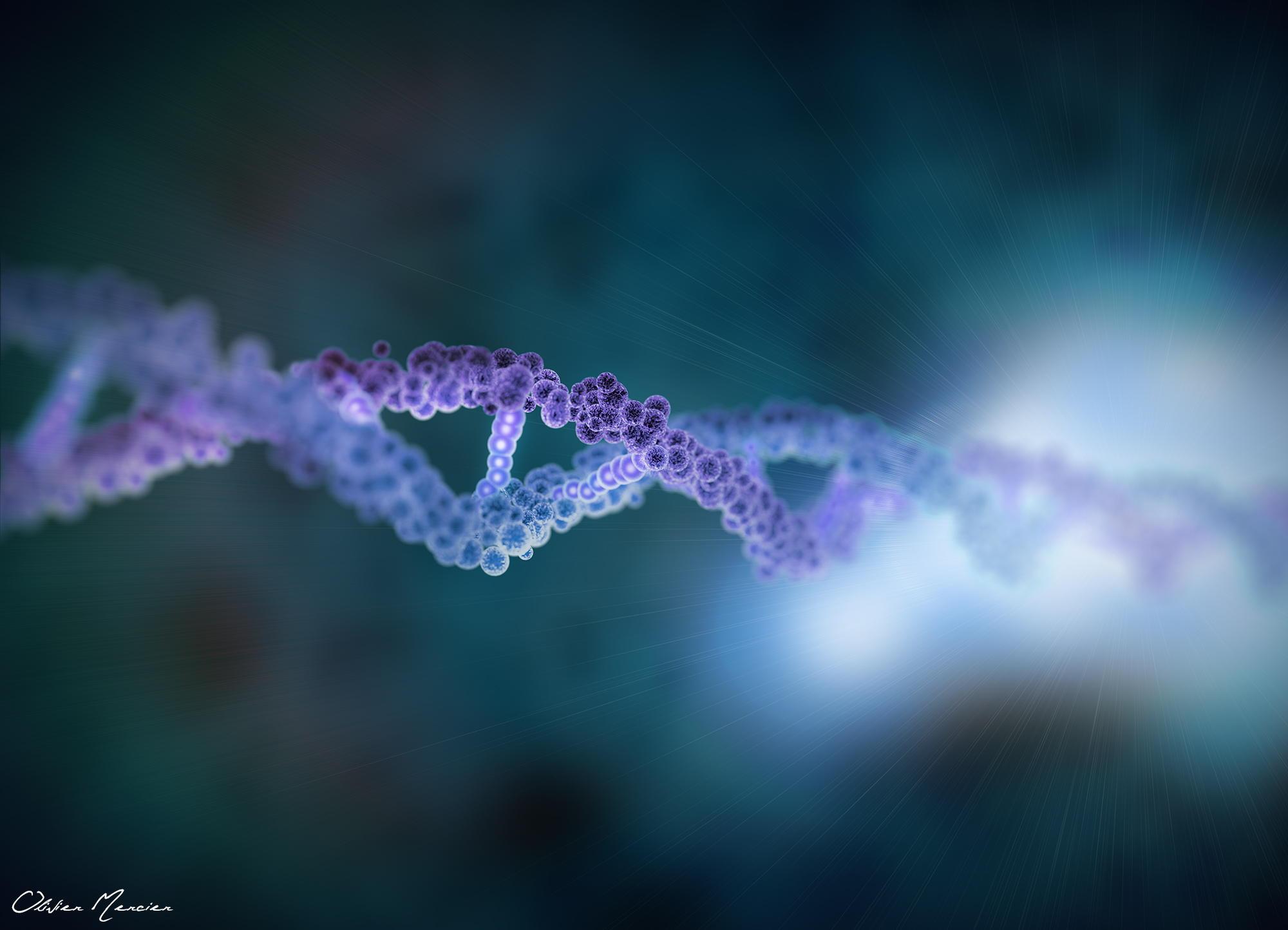 ncRNA(非编码RNA)专项基金课题