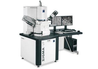 扫描电镜免疫组化、HE染色、Tunel检测、Masson染色、特殊染色、免疫荧光、激光共聚焦、透射电镜、扫描电镜等  威斯腾生物,让科研更简单!