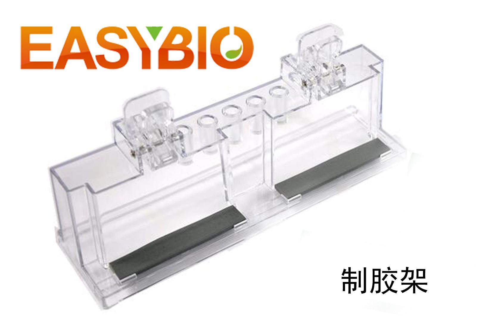 制胶架 伯乐bio-rad 电泳配件耗材 电泳仪 电转仪