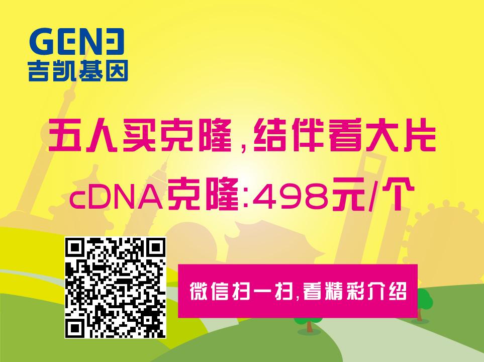 cDNA克隆——498/个