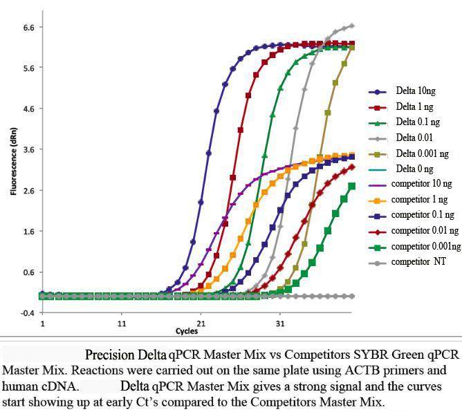 临床实验RNA分离扩增