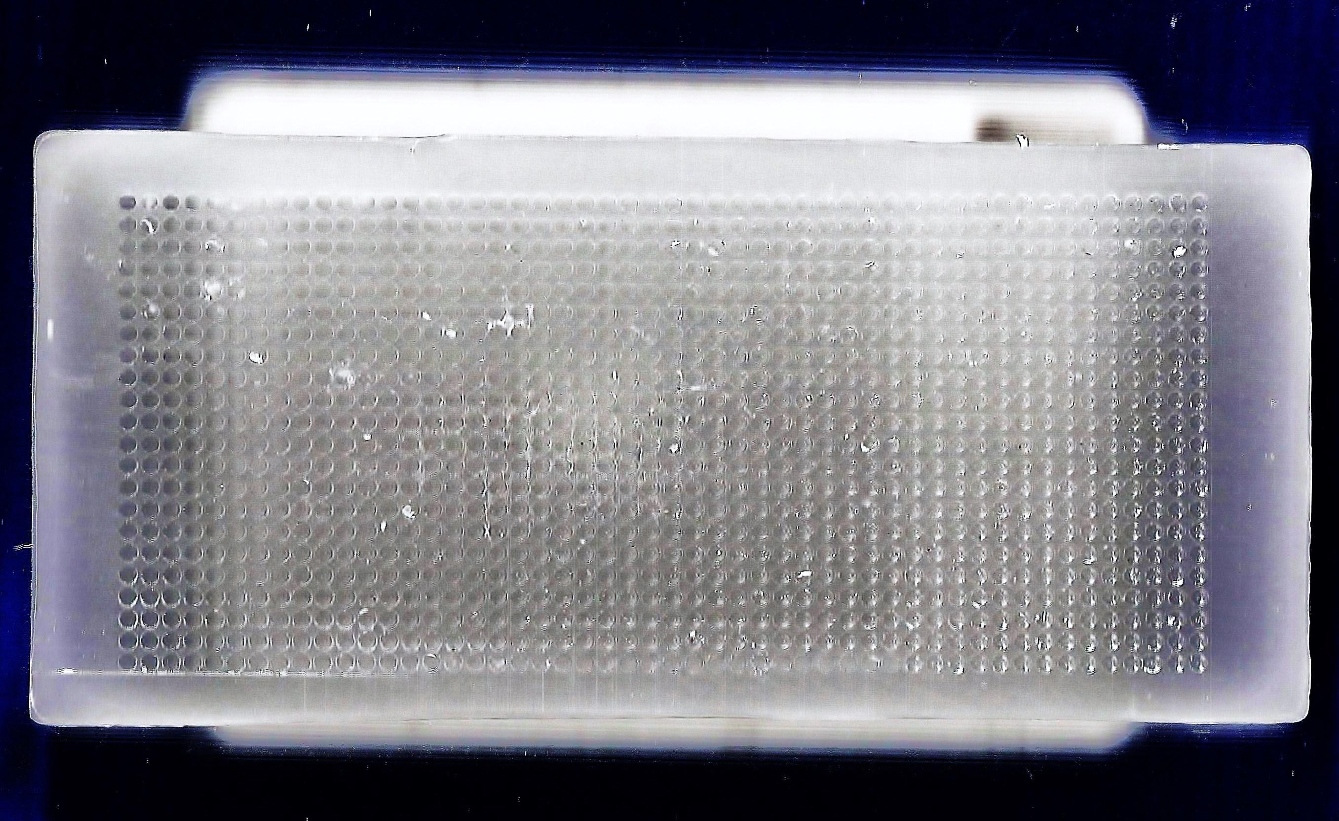 高密度组织芯片蜡块模(high density paraffin block)