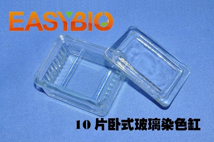 10片玻璃染色缸 卧式