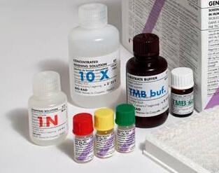 Biaffin 芹黄素 Apigenin(PKI-APGN-500)