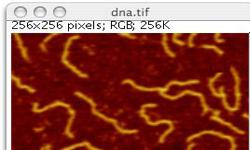 图像处理软件ImageJ 1.46